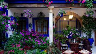 Öt tökéletes hely tavaszi virágleshez