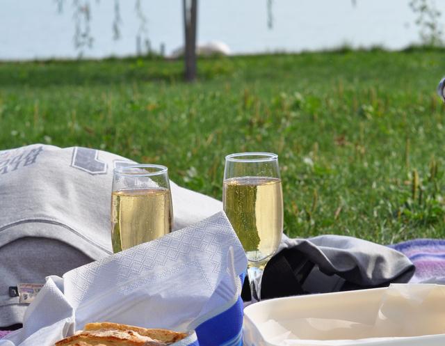 piknik 03