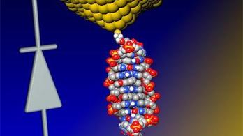 DNS-ből van a világ legkisebb diódája