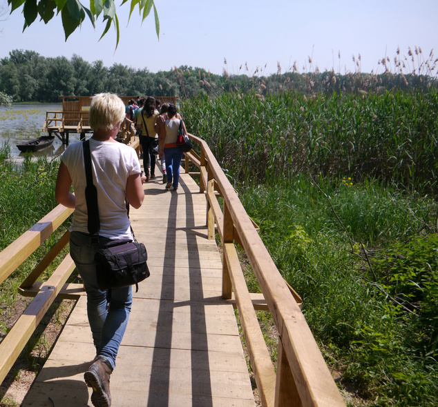 Forgó-tó tanösvény