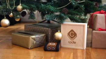 Ezért nem került Codie a karácsonyfa alá