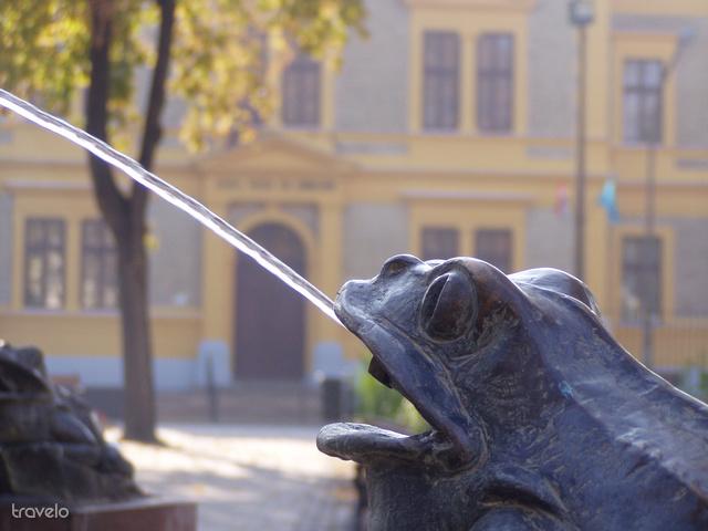 Belváros, háttérben a Lehel Vezér Gimnázium