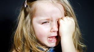 Tudnivalók mimózalelkű gyerekek szüleinek