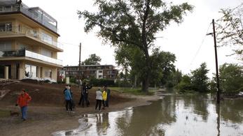 Eldőlt: 1500 fát vágnak ki a Római-parton