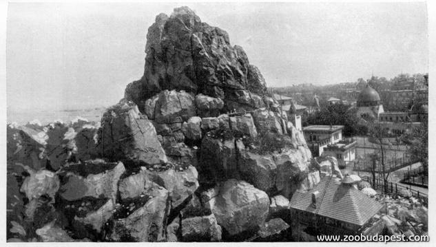 A képre kattintva kiderül, hogyan épült a Nagyszikla, és hogy miért kellett disznószőrt keverni a cementhabarcsba az 1909 és 1912 között zajló állatkerti építkezések során