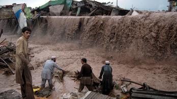 Mekkora kárt okoznak a természeti katasztrófák?