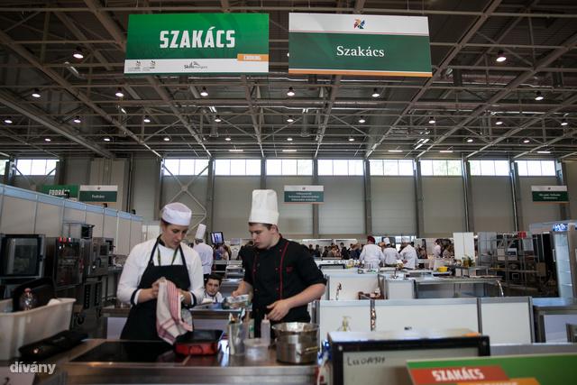 Április 18-20 között rendezték meg a szakmák versenyét a Hungexpón.