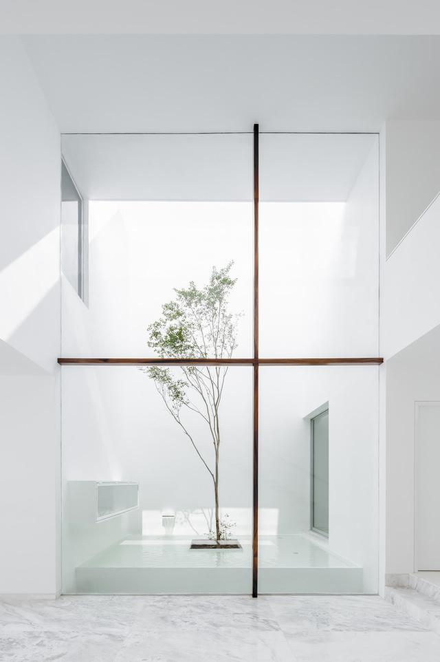 A mexikói házat tervező Abraham Cora Paredes építésziroda szerint az általuk használt formák és nyitott terek nem zavarnak bele a házban élők privát szférájába, ellenben lehetővé teszik, hogy az egész házat átjárja a fény és a levegő. – írja az archdaily.com a 2015-ben készült hófehér villáról.
