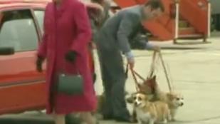 Ősrégi videó II. Erzsébetről és magánrepülőn utazó kutyáiról