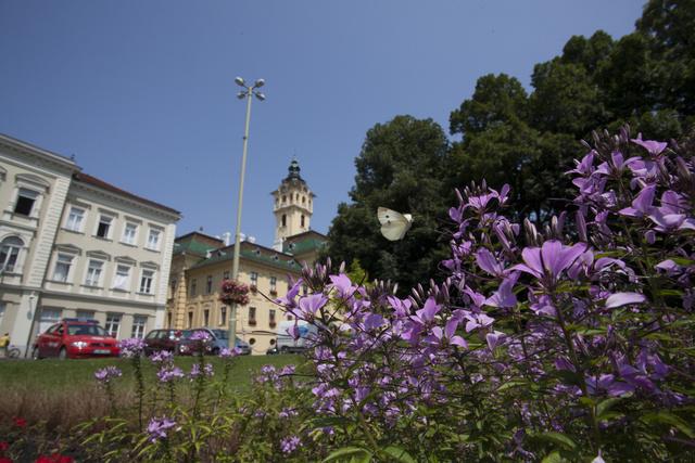 Parkos környezet a Városházánál