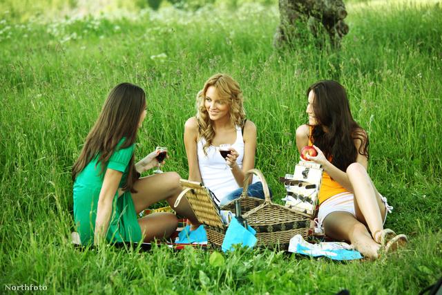 Piknik anyuval