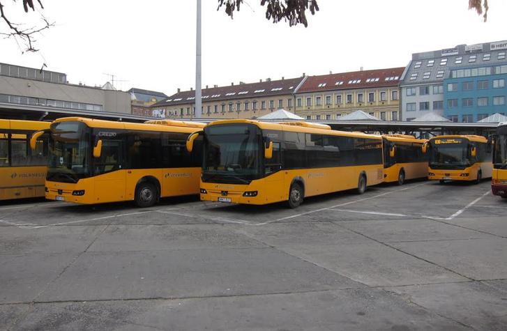 Húsz Credo Econell már két éve forgalomban van a Volánbusznál. Az állami cég azóta sem vásárolt magyar gyártású autóbuszt