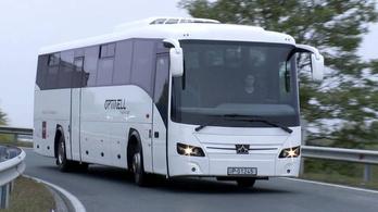 Micsoda pech: pont egy centivel rövidebb a magyar busz