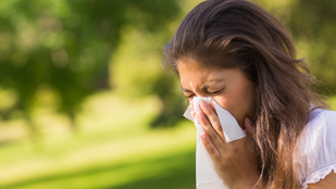Pollenallergia terhesen - teendők