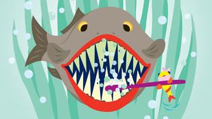 Ismeri ezeket a fogászati újításokat?
