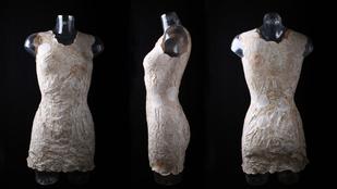 Egy hét alatt ruha nő a gombából