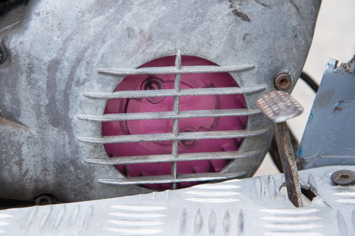 A rózsaszín turbó