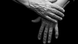 Egy 81 éves asszonyt erőszakolt meg egy pomázi férfi
