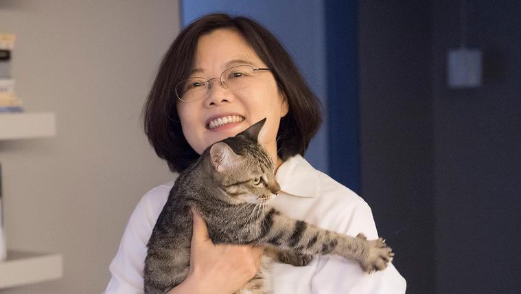 Jogász, két macskával él, az ő országát is Kínának hívják