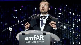 Leonardo DiCaprio a világ legnagyobb gyökere