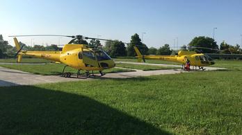 Két sárga Mókussal bővül a honvédség helikopterflottája