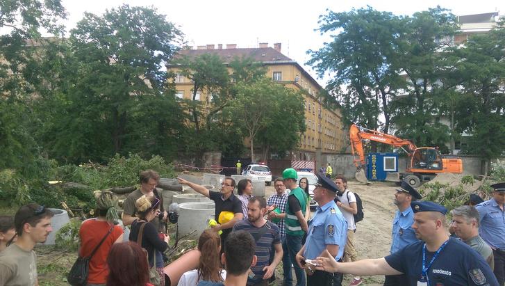 Forrás: Ligetvédők - Orczy park Facebook-oldal