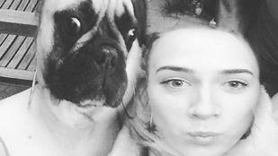Instahíradó: Tóth Gabi kutyával cserélt fejet, ez lett belőle