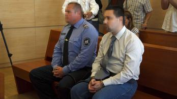 9 év börtönt kapott a gólyatábori erőszakoló