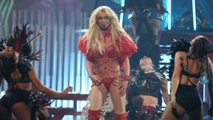 Britney Spears fiai utálják, ha anyjuk 'Britney Spears'