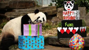 Júliustól tényleg ingyen van a Happy Birthday