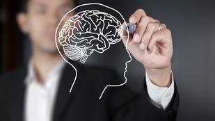 7 dolog, amit mi még nem, de az agykutatók már tudnak rólunk