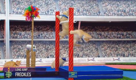 Macskás videókkal nyomja le a Hallmark Channel a riói sportközvetítéseket