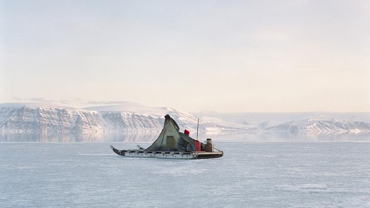 Leolvad Grönland monoton mesevilága