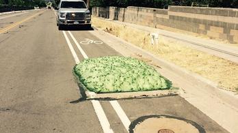 Zöld hab bugyborékolt elő egy amerikai utcában