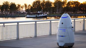Ártatlan a gyerekbántalmazással vádolt robot