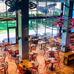 Éttermet nyitott a Barcelona sztárfocistája