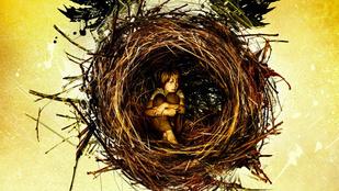 Három napon belül jön a 8. Harry Potter történet!