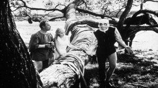 Középkori lélekhorror Bergman módra
