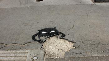 Eljárás indult a kutyapártosok ellen legutóbbi városszépítő akciójuk után