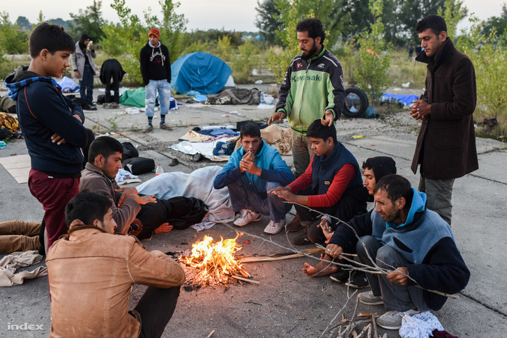 Menekültek Horgosnál 2015 szeptemberében