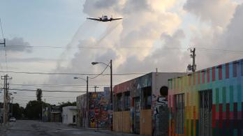 Mutáns szúnyoggal legyőzhető a zika
