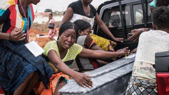 Világméretű sárgalázjárványra figyelmeztet egy nemzetközi segélyszervezet