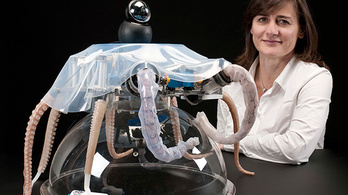 Robotpolipot építettek hajlékony karokkal