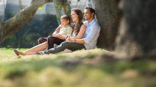 Hogyan határozza meg a család a sorsunkat?