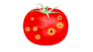 Meg lehet enni a foltos gyümölcsöket?