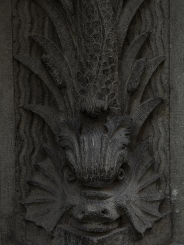 A kaput őrző egyik harcsa.
