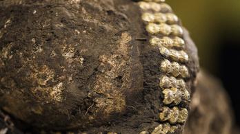 7. századi kislány koponyáját találták meg Debrecen mellett