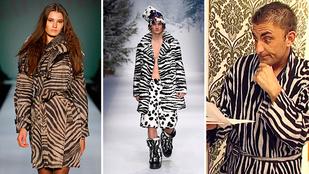 A zebraminta örök divat