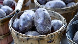 Egyen lila krumplit, mert jót tesz az egészségének