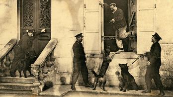 Miért tűntek el a rendőrkutyák Párizsból?